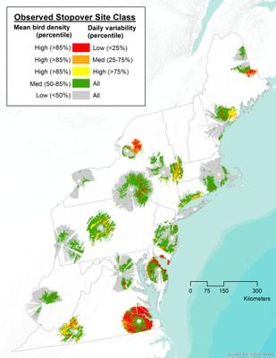 Identifying Important Migratory Landbird Stopover Sites in the Northeast