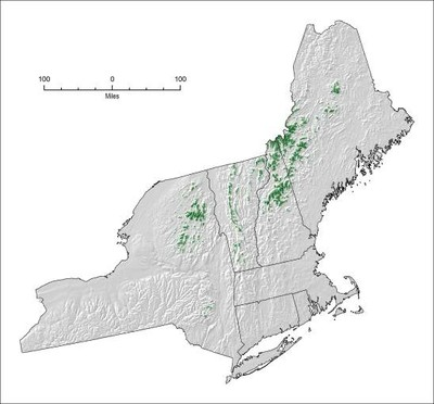 Vulnerabilities to Climate Change of Northeast Fish and Wildlife Habitats, Phase II