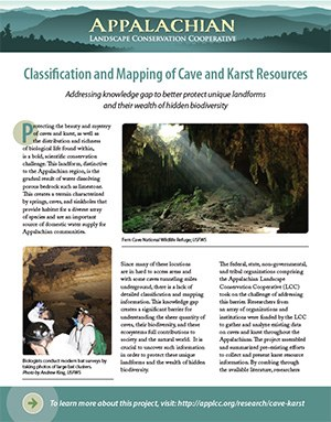 Fact Sheet: Cave and Karst Resources