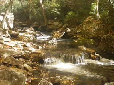 Stream Virginia