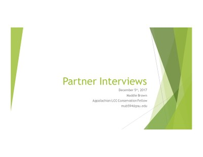 Partner Interviews