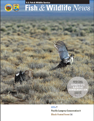 Fish and Wildlife News SHC Issue