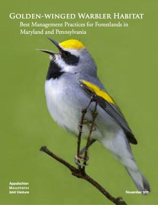 Golden-winged Warbler Habitat: Best Management Practices
