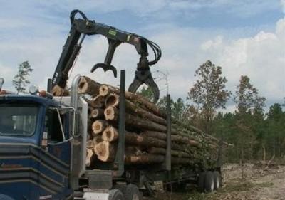 Logging Truck North Carolina