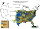 Species map for Northern Bobwhite