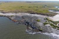 Coastal Resilience Resource List