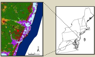 Designing Sustainable Landscapes: Landscape Capability for Marsh Species