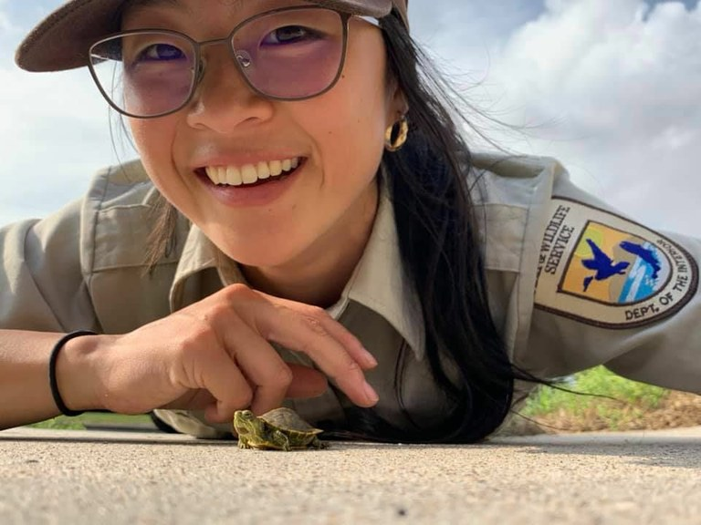 Baby Turtle Season
